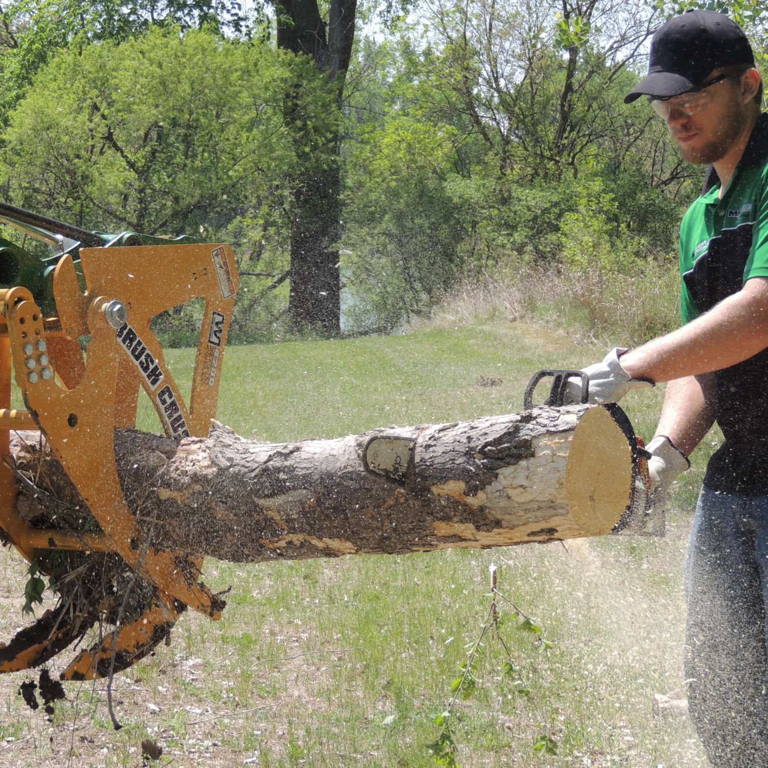 BC-4200 holds a log to be cut into firewood.